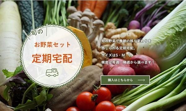 お野菜セット定期宅配